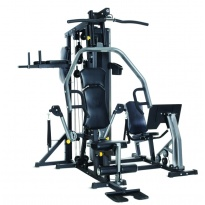 Multistacja Horizon Fitness Torus 5